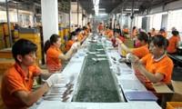 Empresas privadas de Ciudad Ho Chi Minh operan con dinamismo y eficiencia