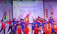 Vietnamitas en ultramar preparan para Tet 2019