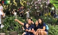 Más de un millón de visitantes en Festival de Flores de Ciudad Ho Chi Minh