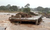 Huracán Idai no afecta a vietnamitas en Mozambique