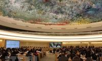 ONU aprueba resolución propuesta por Venezuela sobre los derechos humanos