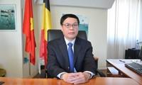 Embajador vietnamita en Bélgica resalta importancia de la colaboración entre parlamentos de su país y de Europa