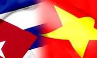 Revisan relaciones especiales entre Vietnam y Cuba