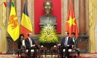 陈大光会见比利时瓦隆-布鲁塞尔联邦首席大臣鲁迪·德莫特