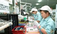 越南工会真正代表工人阶级的利益