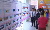 东盟文化日在永福省举行
