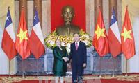 继续加强越南智利全面合作关系