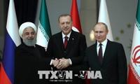 俄土伊三国领导人讨论叙利亚问题