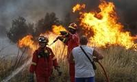 希腊森林火灾遇难人数升至74人 全国哀悼3天