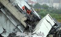 意大利高架桥坍塌事故:未有越南公民伤亡的报告