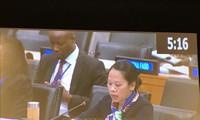 越南在联合国大会会议上分享脱贫减贫经验