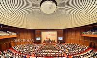 越南国会讨论《特赦法修正案(草案)》和《饲养法(草案)》