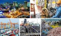 越南经济增长出现许多亮点
