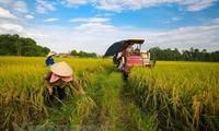 Economie verte pour le développement durable et l'adaptation au changement climatique