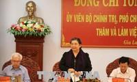 La vice-présidente de l'Assemblée nationale Tong Thi Phong à Gia Lai