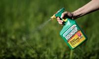 Monsanto condamné pour avoir causé le cancer de Dewayne Johnson