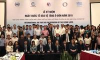 Célébration de la Journée internationale de protection de la couche d'ozone
