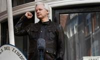 «Conditions réunies» pour qu'Assange quitte l'ambassade d'Equateur à Londres