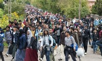 UN urges international cooperation to manage migration flows