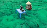 Photo exhibit 'Colors of life' honors Vietnamese women