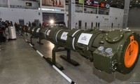 Russia: US has not provided evidence of Moscow violating INF Treaty