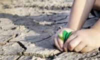 Compréhension orale: leçon 10: l'adaptation au changement climatique