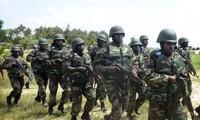 Egypt, Nigeria kill dozens of terrorists