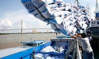 Vietnam's rice exports to Malaysia skyrocket