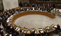 Weltgemeinschaft begrüßt die Erklärung des UN-Sicherheitsrats zu Syrien