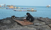 Das Leben auf der Insel Hon Chuoi in Ca Mau