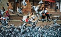 "Ho Chi Minh Stadt: Ausstellung ""Nach Nepal richten"""