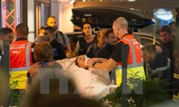 Vietnam verurteilt den Terroranschlag in der französischen Stadt Nizza scharf