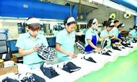 Der Export von vietnamesischen Lederschuhe wird sich im Jahr 2018 besser entwickeln