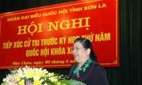 Vize-Parlamentspräsidentin Tong Thi Phong trifft die Wähler im Kreis Moc Chau in der Provinz Son La