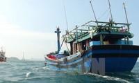 Bemühungen Vietnams zur Aufhebung der gelben Karte der EC gegen Produkte der Aquakultur