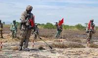 Vietnam und die USA treiben die Beseitigung der Kriegsfolge voran