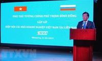 Umsetzung des Vietnam-Jahres und des Russland-Jahres