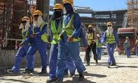 Вьетнамские трудящиеся в Катаре не пострадают