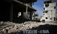 Швеция и Кувейт внесли в СБ ООН проект резолюции о 30-дневном прекращении огня в Сирии