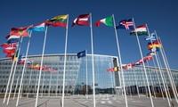 В НАТО пытались отговорить США от выхода из ракетного договора