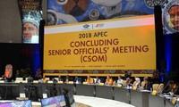 Конференция по подведению итогов встречи высокопоставленных чиновников в рамках форума АТЭС 2018