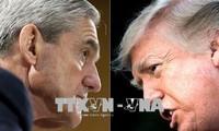 Трамп осудил расследование возможного вмешательства России в президентские выборы в США в 2016 году