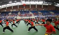 Silat tradisional Vietnam sedang diterima oleh sahabat-sahabat  seluruh dunia