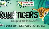 """Lebih dari 750 orang peserta event: """"Lari demi harimau"""" tahun 2018"""