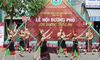 Aktivitas-aktivitas yang bergelora dalam rangka Festival Kebudayaan Kain Ikat Vietnam kali pertama