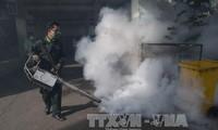 Thailand raises Zika alert level