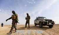 Iraq hunts down IS militants