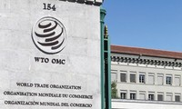 WTO launches investigation into Trump's China tariffs