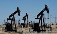 OPEC meningkatkan prakiraan tentang hasil produksi minyak tambang global