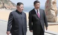 Presiden Tiongkok akan melakukan kunjungan ke Republik Korea dan RDRK pada tahun 2019